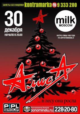 """30 декабря 2012 - Концерт - Москва - Клуб Milk Moscow - """"...в лесу она росла"""""""