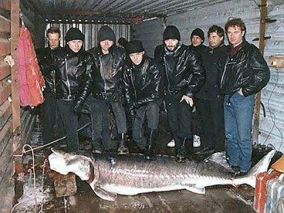 6 марта 1994 - Концерт - Волгоград - ДС - Акция «Greenpeace Rocks» (Сборный концерт)